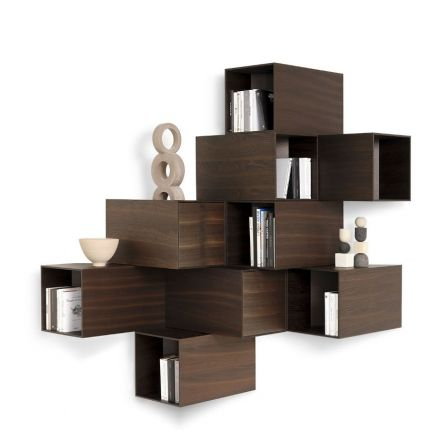 MOGG Cellula - Arrangements for wall containers